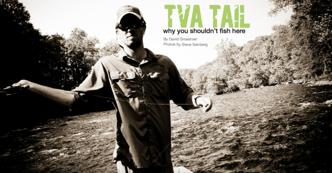 SCOF_tvatail_2011_coverpage