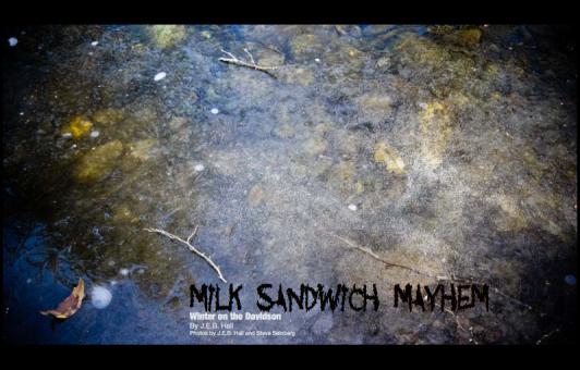 milk sandwich_scof2_2012_seinberg